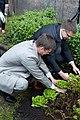 Ministru kabineta dārzeņu dobes atklāšana (7247968348).jpg