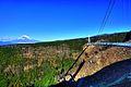 Mishima sky walk.jpg
