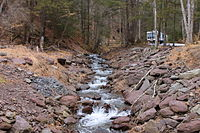 Mitchler Run looking upstream 1.JPG