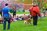 Month of Military Child MWD demonstration 150414-F-OH119-211.jpg