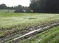 Morning dew, Poughley - geograph.org.uk - 257620.jpg