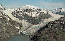 Morse Muir Glaciers 1994.jpg