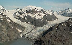 Muir Glacier - Image: Morse Muir Glaciers 1994