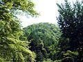 Mount Arashiyama.jpg
