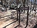 Mount Yonah Trail - panoramio (1).jpg