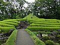 Mount in Momijiyama Garden in Sumpu Castle Park.JPG