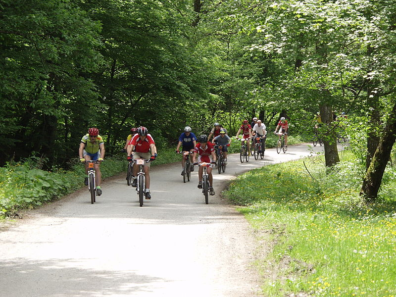 File:Mountain biking.JPG