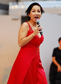 My Linh Vietnam Festival 2008 in Japan.jpg