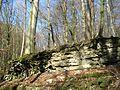 NLP Langes Tal alter Steinbruch 7.jpg