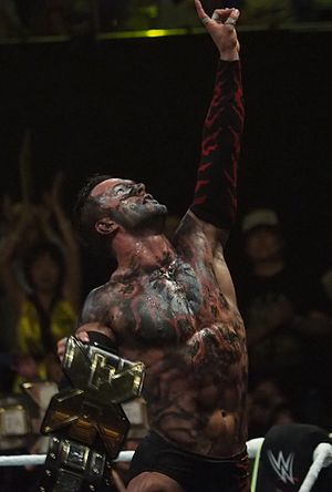 NXT Championship - The longest reigning NXT Champion Finn Bálor
