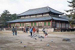 http://upload.wikimedia.org/wikipedia/commons/thumb/5/5a/NaraKofukuji.jpg/250px-NaraKofukuji.jpg