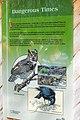 Narcisse Snake Dens Information Sign 15.jpg