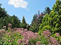 National Arboretum in August (15040783080).jpg