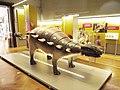 Natural History Museum of Slovenia 4.jpg