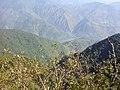 Nature20141002 091044.jpg