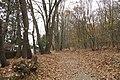 Nature reserve Šance in autumn 2012 (3).JPG