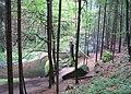 Nature reserve Pavlinino udoli (023).jpg