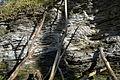 Naturschutzgebiet Am roten Steine - Hausberg - Schichten der unteren Jura (4).JPG