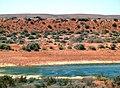 Near Leigh Creek SA - panoramio.jpg