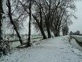 Neve nel sentiero.jpg