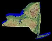 New York Relief 1-EDIT.jpg