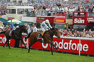 North Light Irish-bred Thoroughbred racehorse