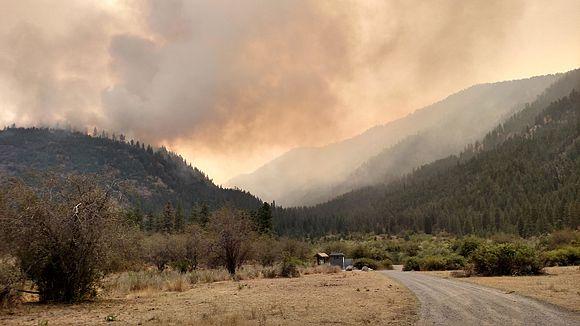 Okanogan Complex Fire - USFS.jpg