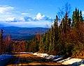 Old Ridge Trail.jpg