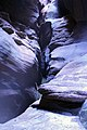 One of the Swims in Pine Creek - Zion National Park DyeClan.com - panoramio.jpg