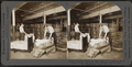 Opening bales of raw silk as it arrives from China, Japan and Italy. Silk industry (reeled silk), South Manchester, Conn., U.S.A, by Keystone View Company.png