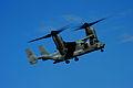 Operation Unified Response DVIDS244960.jpg