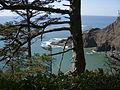 Oregon coast trail north cape falcon P2529.jpeg
