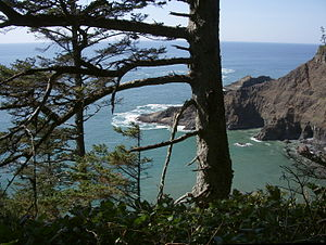 Oregon Coast Trail - Headlands visible from Oregon Coast Trail north of Cape Falcon within Oswald West State Park