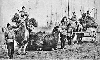 Orenburg Cossacks - Orenburg Cossacks on camels, c. 1910