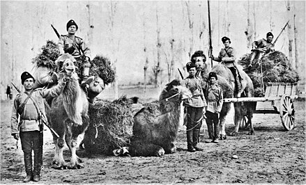 Orenburg Cossacks with camels, 19th century. Orenburg cossacks with camels.jpg