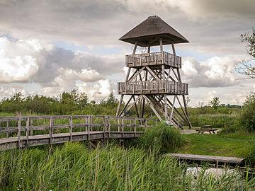 """Overkapte uitkijktoren """"Romsicht"""" in de Alde Feanen.jpg"""