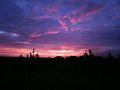 Päikeseloojang, Haaslava vald.JPG