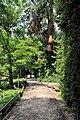 PL-PK Bolestraszyce, arboretum 2011-06-16--12-51-27-052.jpg