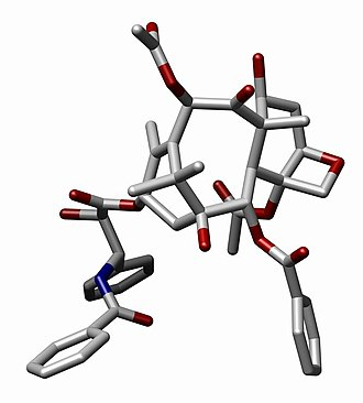 Cyclic compound - Image: Paclitaxel J Mol Biol 2001 1045