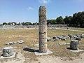 Paestum - Colonna del Foro.jpg