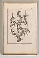 Page from Album of Ornament Prints from the Fund of Martin Engelbrecht MET DP703614.jpg