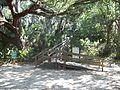 Palmetto FL Emerson Point Portavant Mound06.jpg