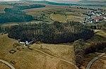Panschwitz-Kuckau Ostroer Schanze Aerial.jpg
