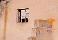 Paravani (14751834773).jpg