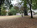 Parc Lefèvre - Livry Gargan - 2020-08-22 - 16.jpg