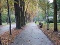 Park miejski w Kielcach (76) (jw14).JPG