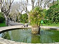 Parque Municipal de Oeiras - Portugal (231046885).jpg