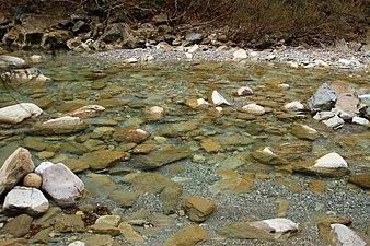 Parque Nacional de Ordesa. Río Arazas.jpg