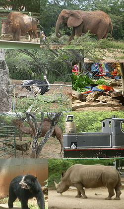 Parque Zoológico y Botánico Bararida 000.jpg