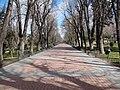 Paseo del Parque de San Antonio - panoramio.jpg